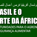 Relação Brasil—Norte da África será o tema de seminário em São Paulo