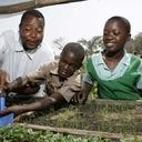 Investimento em nutrição é chave para desenvolvimento na África