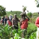 Camarões lança programa para o desenvolvimento da agricultura nacional