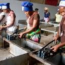 Banco Mundial prevê crescimento de 3,7% na África Subsaariana