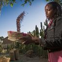 Etiópia: investimento social gera desenvolvimento econòmico