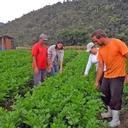 Sistema brasileiro de abastecimento e comercialização de alimentos é exemplo para América Latina