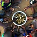 Brasil e ONU divulgam iniciativas de cooperação que levaram o Fome Zero para a África