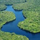 Projeto de lei reduz área de preservação de florestas em áreas sensíveis