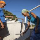 Prêmio: Brasil é referência mundial em combate à degradação do solo