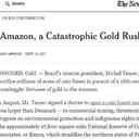 The NYT: Temer sacrifica Amazônia em corrida do ouro