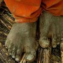 Trabalho escravo: número de resgatados despenca
