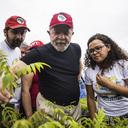 MST produz 3,8 milhões de mudas para recuperar Rio Doce