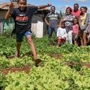 Meio ambiente e agricultura familiar caminharam juntos