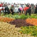 Ambiente e agricultura ganharam com separação de pastas no governo Lula