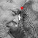 Vídeo: De Pernambuco para Lula
